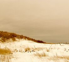 Snow beach by GleaPhotography