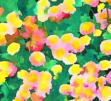 Daisy Patch - Abstract Watercolor Floral by Jacqueline Maldonado