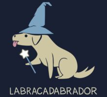 L(abracadabra)dor by cheezup