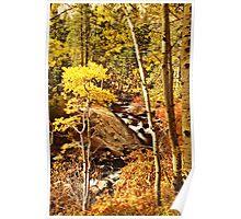 Lee Vining Creek #4: Eastern Sierra, Fall, 2013 Poster