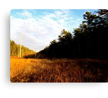 Land and Telephone wires Canvas Print