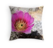 Purple Cactus Flower Throw Pillow