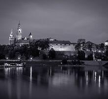 Wawel Castle by Maciej Nadstazik