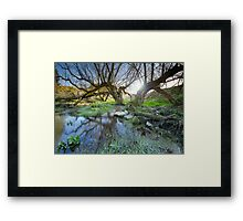 Swallowhead Spring Holy Well Framed Print