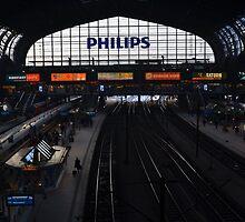 Hamburg Hauptbahnhof by vonb