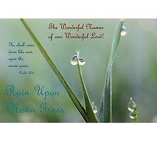 Rain Upon Mown Grass Photographic Print