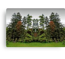 Mirrorlandia Woods Canvas Print