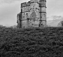 Donnington Castle, Newbury by mattwhitby