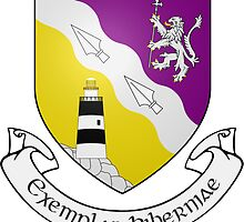 County Wexford Coat of Arms  by abbeyz71