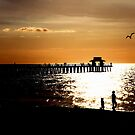 Sunset over the amazing Mexican gulf . by imagic