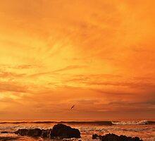 Sunrise: Santa Teresa, Costa Rica, 30 December 2012 by quistphotog