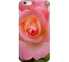 Rose Pink and Orange iPhone Case/Skin