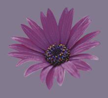 Purple daisy Kids Clothes