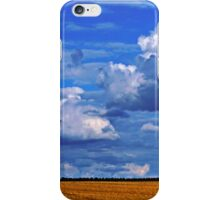 After The Harvest 1 iPhone Case/Skin