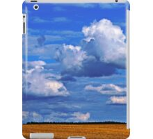 After The Harvest 1 iPad Case/Skin