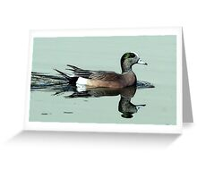 American Wigeon Duck Portrait Greeting Card