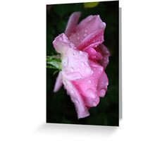 Rose to Victory - - over Breast Cancer Greeting Card