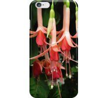 Orange Fuchsias iPhone Case/Skin