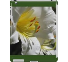 Casa Blanca for your ipad iPad Case/Skin