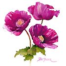 Purple Poppies for your iphone or ipod by Pat Yager
