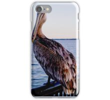 Pelican at Port iPhone Case/Skin