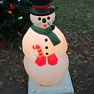 Electric Snowman by Misti Rainwater-Lites