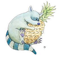 Raccoon & Pineapple by Tim Gorichanaz