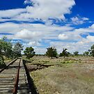 Abandoned Railway Line by Terry Everson
