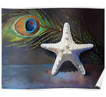 Starfish with peacock feather Poster