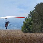 Fort Funston Hang Glide Takeoff by David Denny