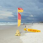 Surf Rescue Broadbeach April 2014 by FangFeatures