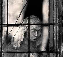 Statue behind window by ictor