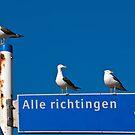 To where....? by Adri  Padmos