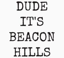 Dude, it's Beacon Hills by Caitlin Hallam