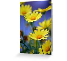 Yellow Daisies Blue Greeting Card