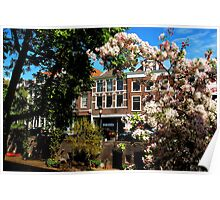Spring blossoms at Utrecht Poster