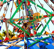 Whirligig by Cecilia Carr