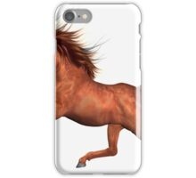 Chestnut Stallion  iPhone Case/Skin
