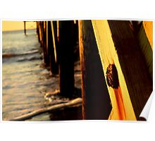 Rusted Pier Bolt Poster