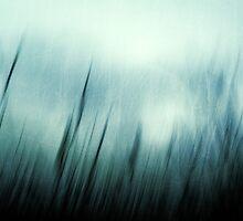 Sirocco by Dorit Fuhg
