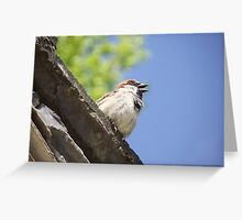 Sparrow's Song Greeting Card
