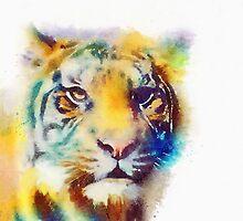 The Elusive - Tiger Watercolor Painting by Jacqueline Maldonado