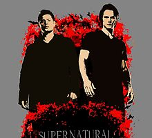 Winchesters case by cirdec