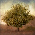 Whimsical Tree by Honey Malek