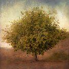 Whimsical Tree by Honey Malek