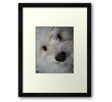 Emotional Support Dog (Portrait) Framed Print
