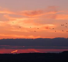 Sunset at Hayling Island by looneyatoms