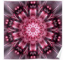 Pink Evolution Kaleidoscope Poster