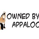 Owned by an Appaloosa by Diana-Lee Saville