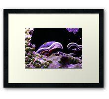 ©NS Surface IIA Framed Print